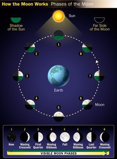 How moon phase works